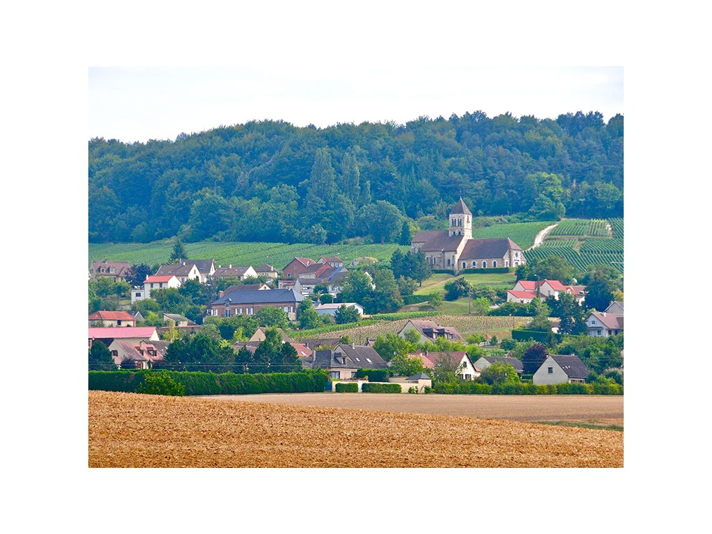 Champagne Day Tours France