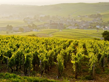 Bourgogne-Champagne Super Stay Combo, 5 days, 5nights in hotel **** Beaune & Reims