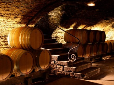 Burgundy small group Day Tour - Grands Crus route tour, tasting of 10 wines in family domains, expert wine guide 7/7
