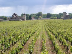 BURGUNDY SHORT BREAKS - 1 DAY & 1 NIGHT