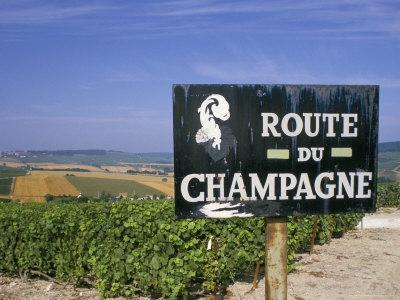 Guided tours to the Champagne region
